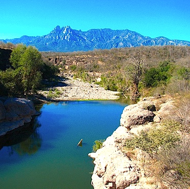 Sierra Álamos – Río Cuchujaqui (Area protegida) AP1_120