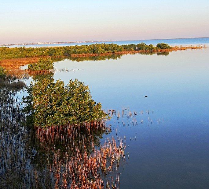 Laguna madre y delta del r o bravo for Cajeros cerca de mi ubicacion