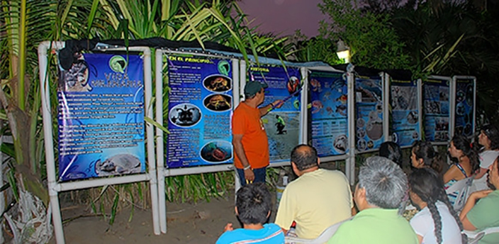 Release of Turtles, Tecolutla