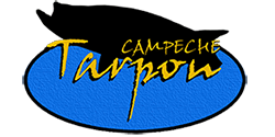 Campeche Taupon