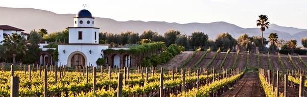 imagen de Finca en Valle de Guadalupe, Ruta del Vino, Baja California