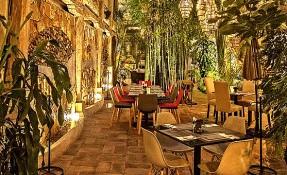 Santo Nahual Restaurant