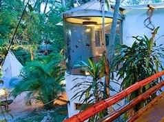 Yaxkin, Palenque