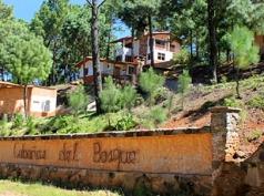Cabañas Del Bosque, Mazamitla
