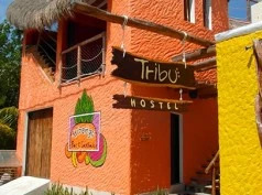 Tribu Hostel, Holbox