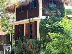 Osa Mariposa, Puerto Escondido