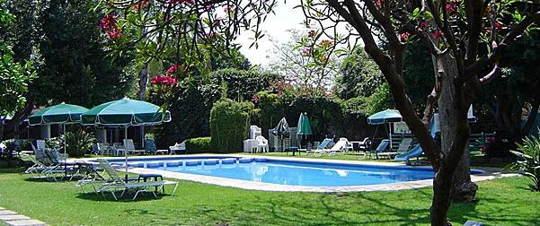 Jacarandas Cuernavaca