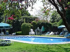 Jacarandas, Cuernavaca
