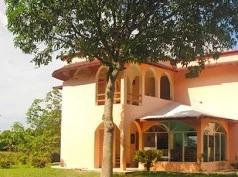 Los Leones, Palenque