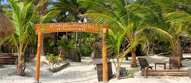 Dos Ceibas Eco Retreat Hotel Tulum Quintana Roo Cheap Prices