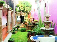 Jacarandas, Guadalajara