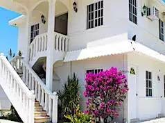 Real Del Mar, Tampico
