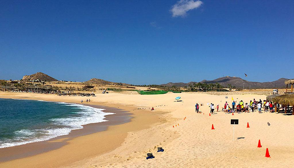 Cosas que hacer en Los Cabos, las mejores playas