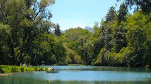 Qué hacer en Huasca de Ocampo, Bosque de las Truchas