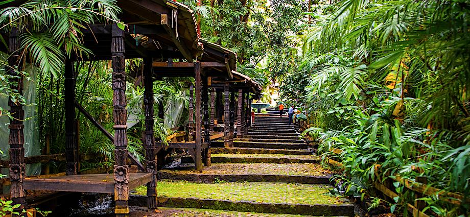 Parque Cupatitzio, Michoacán