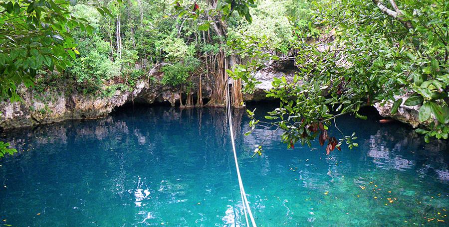 Cenote Verde Lucero, Puerto Morelos